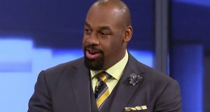 McNabb Fired by ESPN After Harassment Allegations